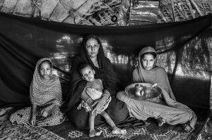 brian sokol refugiats 3